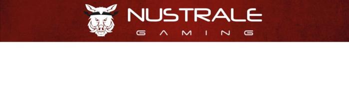Grande finale du tournoi interquartier de Nustrale Gaming
