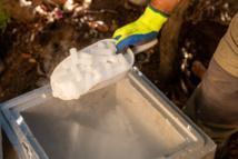 Sous forme de bâtonnets la carboglace est qualifiée écologique et facile d'utilisation.