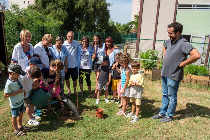 Un nouvel arbre est en train d'être planté sur le terrain mis à disposition par la Ville, un flamboyant.