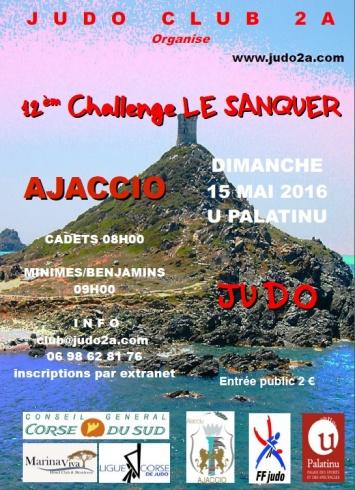 """Compétition de Judo """"12 ème Challenge Le Sanquer"""" au Palatinu"""