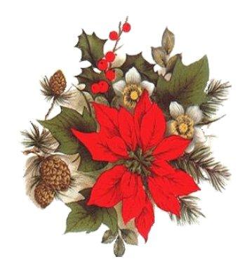 Atelier Floral Mardi 13 Décembre 10:00 Cité Grossetti