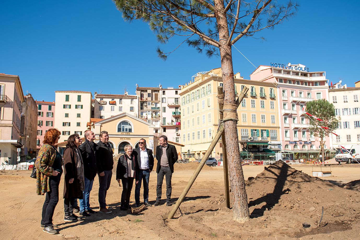 Visite de Laurent Marcangeli, ce mercredi matin, à l'occasion de la plantation des arbres de la place Campinchi (Photos Ville d'Ajaccio).
