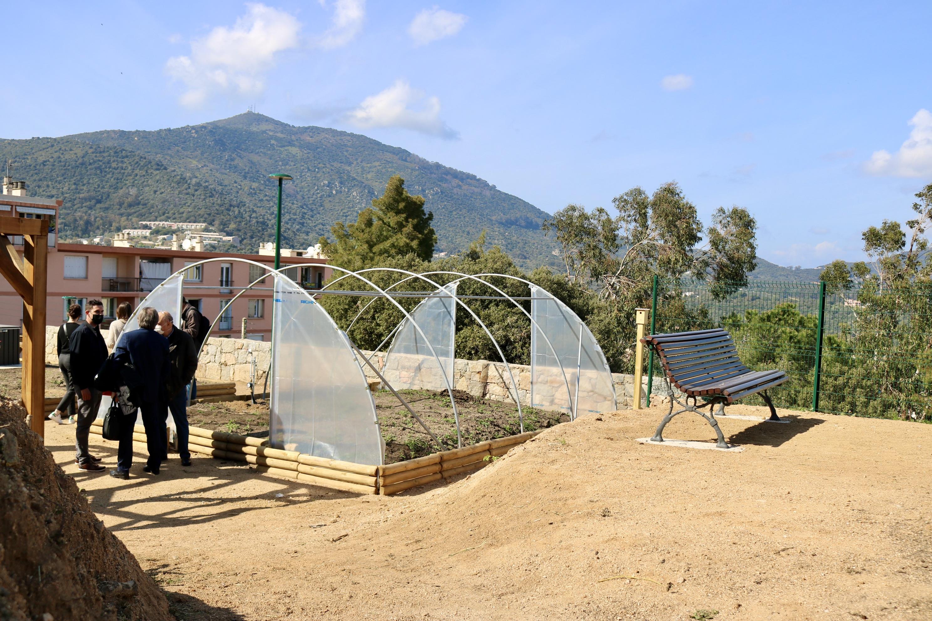 Idéalement situés sur les hauteurs d'Ajaccio, ce coin de jardin potager est géré par l'association de quartier.