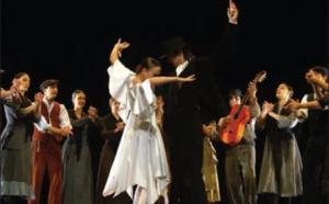 """Danse """"Noces de Sang et Suite Flamenca"""" à l'Espace Diamant"""
