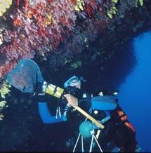 Peche au Corail en Corse