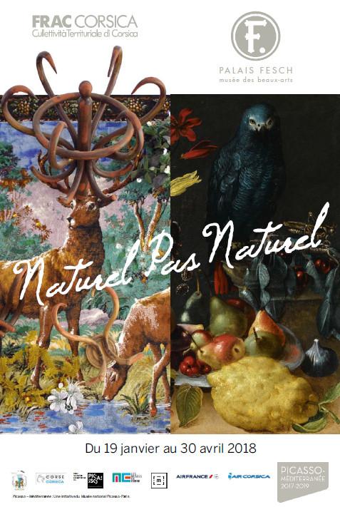 """Exposition temporaire """"Naturel pas Naturel"""" En partenariat avec le FRAC de Corse du 19 janvier au 30 avril au Palais Fesch"""