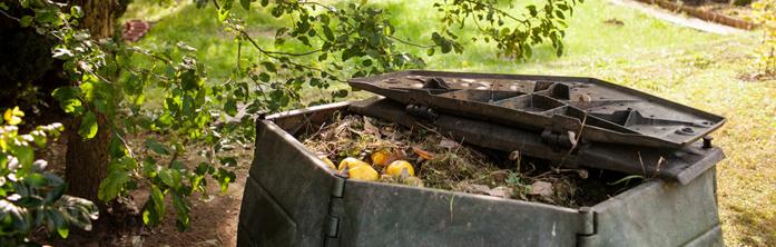 Les déchets verts et composteurs