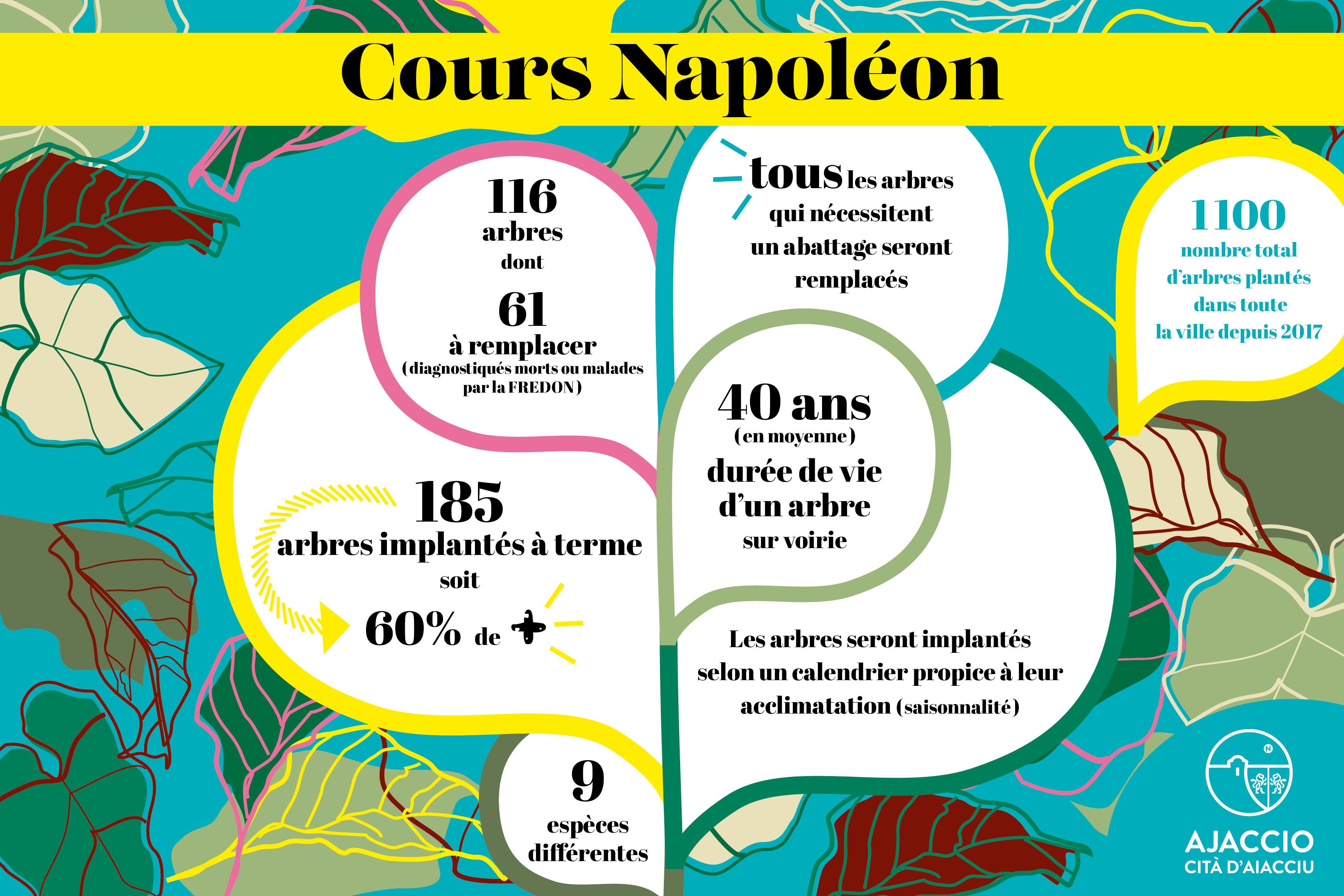 Végétalisation cours Napoléon : Plus de 60 arbres supplémentaires