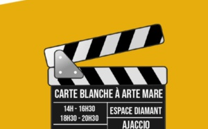Carte Blanche au Festival Arte Mare les 11 et 12 janvier à l'Espace Diamant