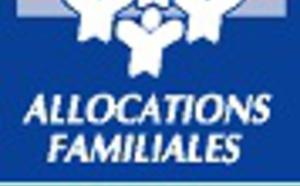 Appel à projets Réseau d'Écoute, d'Appui et d'Accompagnement aux Parents (REAAP).