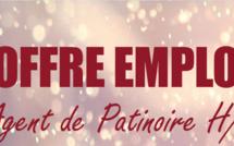 Offre d'emploi Agent de Patinoire H/F
